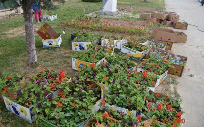 Околу 10.000 пролетни цвеќиња се засадуваат во парковите во Делчево