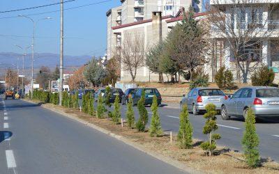 Нови украсни садници се засадуваат во Делчево